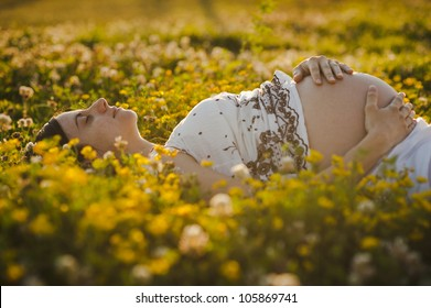 Smiling young brunette pregnant lying down over the flowers