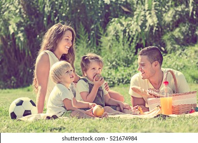 Smiling young family of four having picnic at meadow in summer day