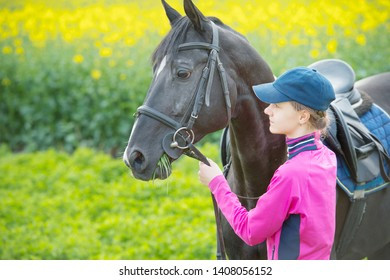 Smiling young horsewoman touching muzzle of dark horse