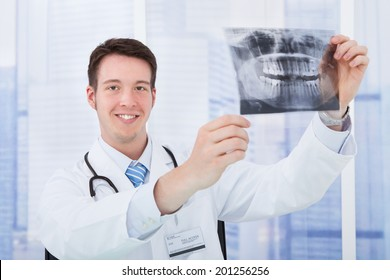 Smiling young male doctor examining dental X-ray in hospital