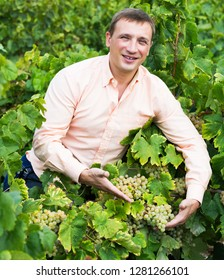 Smiling young vintner with clusters of grape smiling outdoors