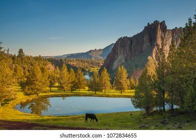 Smith Rocks State Park, a popular rock climbing area in central Oregon near Terrebonne.