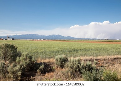 Smoke from the 416 forest fire over ranch land in Durango, Colorado
