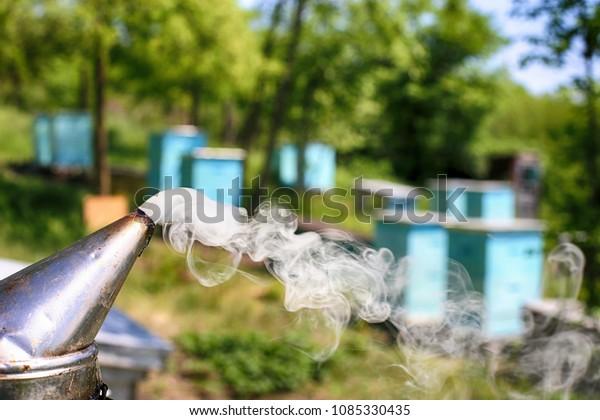 Smoke Bee Smoker On Background Hivesa Stock Photo (Edit Now