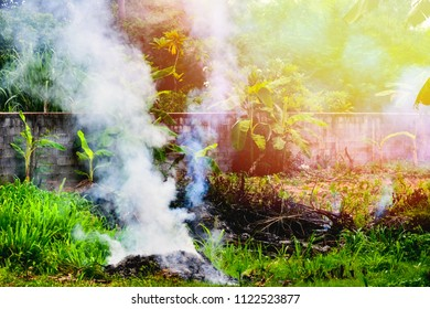 Smoke from burning waste at open area. Concept of air pollution. Can used for Earth Day background.