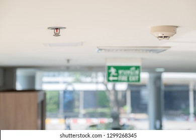 Smoke detector Springer Fire alarm notification   System Fire protection Install In the building office factory suppression With water safety contractors paint