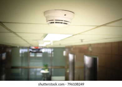 Smoke detectors under the ceiling of the building