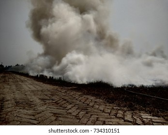 Smoke due to burning of crops stubble