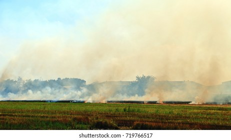 Smoke and flames occur from agriculturist Stubble burning rice straw for farming new rice in Bangkok Thailand
