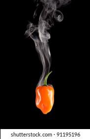 Smoking Hot Habanero Pepper (Capsicum Chinense) on a pure black background.