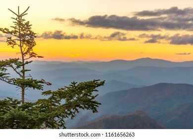 Smoky Mountain Sunset IX