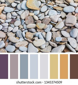 Smooth beach pebble background, iIn a colour palette with complimentary colour swatches.