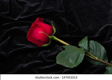 smooth black satin and red rose