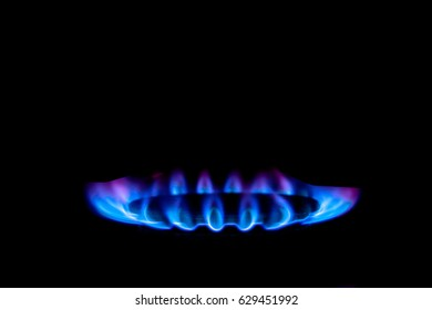 Smooth flame blue violet from the gas stove, on a black background.