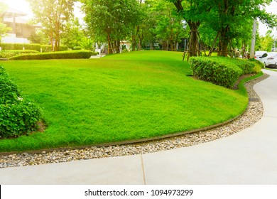 Smooth green grass lawn, trees with supporting and shrub in a good maintenance landscape and garden, gray curve pattern walkway, sand washed finishing on concrete paving, brown gravel border