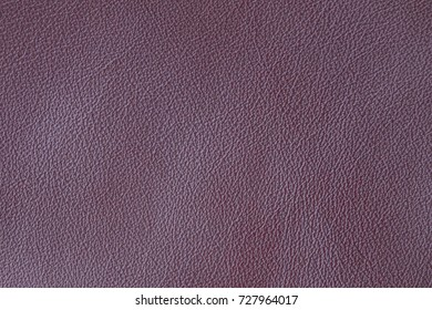 Smooth leather surface. Calm daylight. Homogeneous texture without a pattern. The product is made of genuine leather.