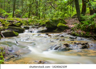 A smooth stream flows in the Red River Gorge