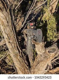 Smuggler's gun in the desert. An AR 15 carbon body.