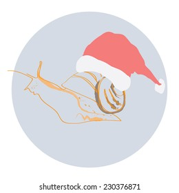 Snail in a Christmas hat .