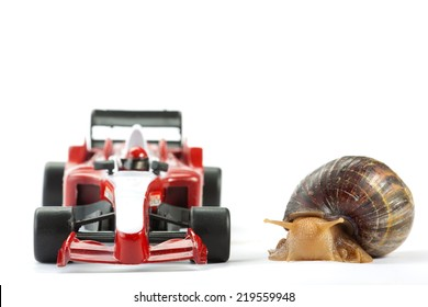 A Snail and an F1 toy car ready to race