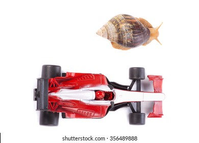 A Snail and an F1 toy car ready to race seen from above