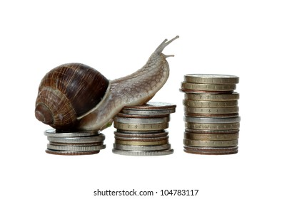 snail scrambles coins