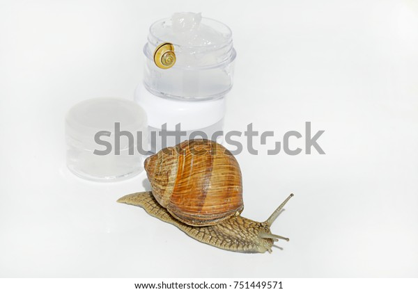 Snail Slime Cream Snail Mucus Extract Stock Photo (Edit Now) 751449571
