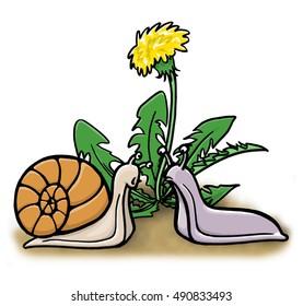 A snail and a slug meet near a dandelion.