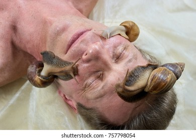 Snails on male face, top view. Cleaning and peeling of mature man face with snails in spa salon. Face therapy with snails.