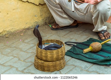 Snake charmer sit and play music for demonstration of the cobra dance outside  Amber fort in Jaipur, India