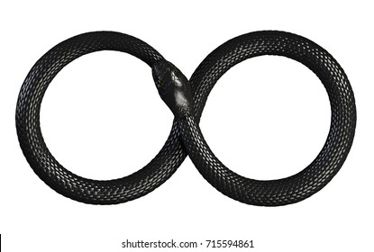 Snake Eating Its Own Tail. Infinite Symbol. 3D illustration
