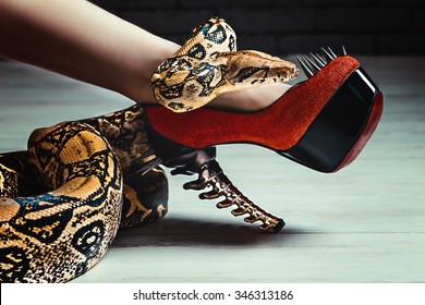 The snake on the woman's leg in the Shoe