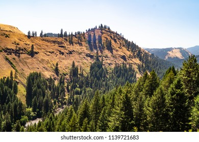 Snake River scenic byway in the Wallowa-Whitman National Forest in Oregon, USA