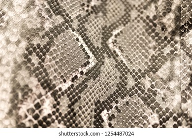 snake scale imitation abstraction