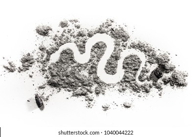 Snake, serpent, boa or python silhouette drawing in ash, sand or dust as endangered animal species, dangerous venom or poison wildlife or bible mythology first sin concept