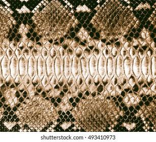 Schlangen-Hauthintergrund