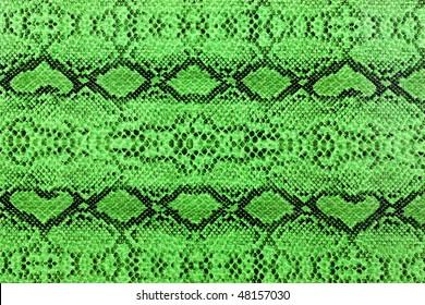 snake skin green and black