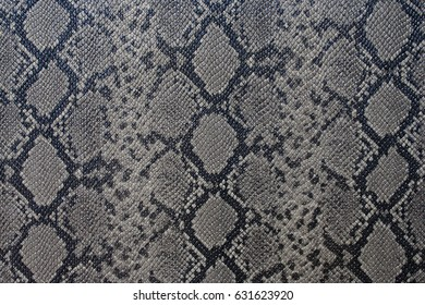 Snake skin with the pattern