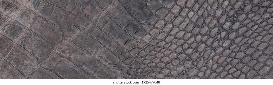 snakeskin leather dark brown background