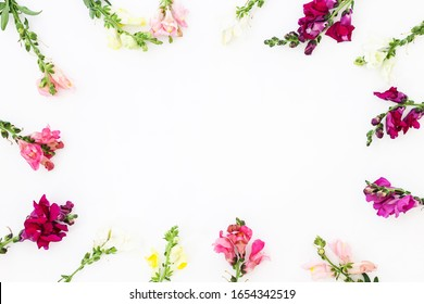 Snapdragon flower border on white background. Flowers composition. Frame made of flowers on white background. Flat lay, top view, copy space