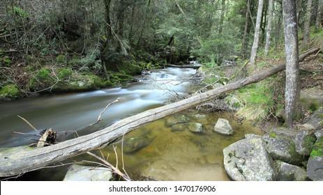 Snobs Creek Falls Eildon Victoria