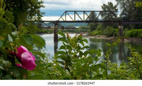 Snohomish River Bridge in the Spring
