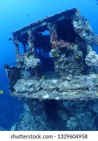 Snorkel and dive in Rabaul from Cruise ship , Papua New Guinea, East New britain . Scuba diving trip png