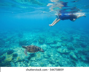 Snorkel and green turtle underwater photo. Sea turtle with swimming woman in mask and snorkeling gear. Exotic sea animals. Tropical island vacation sport activity. Sea lagoon with tortoise. Sea fauna