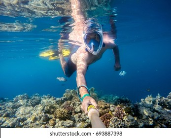 Snorkel swim in underwater exotic tropics paradise with fish and coral reef, beautiful view of tropical sea. Egypt, Marsa Alam. Summer holiday vacation concept