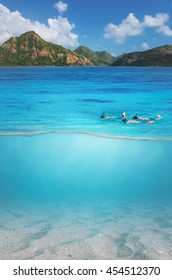 Snorkel swims in shallow water, tourism concept.
