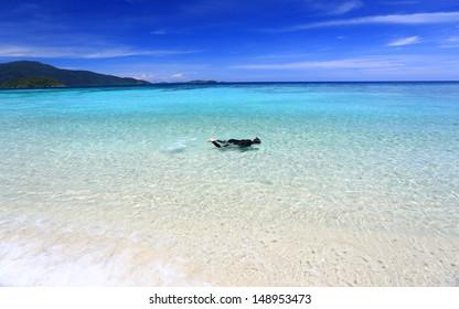 snorkeler swim in clear water beach