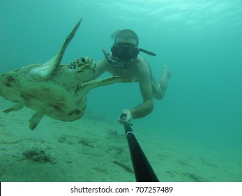 Snorkeler swimming with a green sea turtle very closely. these turtles live in tropical seas: Southeast Asia, Africa and caribbean. Photos taken by action camera in natural light Chelonia mydas selfie