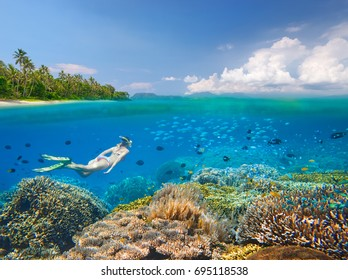 Snorkeler swims over a beautiful coral reef next to scenic tropical beach near the island of Sulawesi, Indonesia a view under the water and above it.