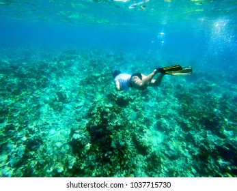 Snorkeling in a clear blue water with beautiful coral reef